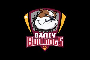 Rating each club's transfers: Batley Bulldogs